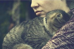 http://www.catapart.fr/conseils-comportementaux/10008-collier-laisse-chat.html